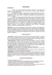 RENASCIMENTO.doc