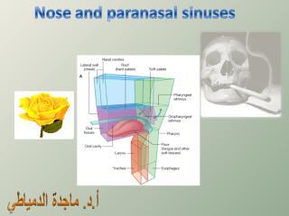 Nasal_cavity_and_paranasal_air_sinuses.ppt